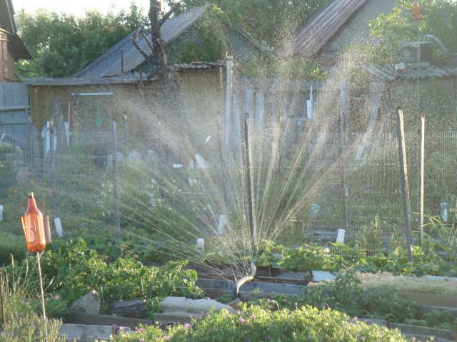 дождевальная система полива