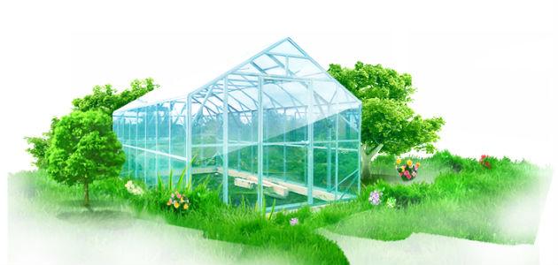 Выращивание цветов в теплице как бизнес: на продажу, в 24