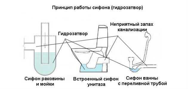 Устройство различных типов гидрозатвора