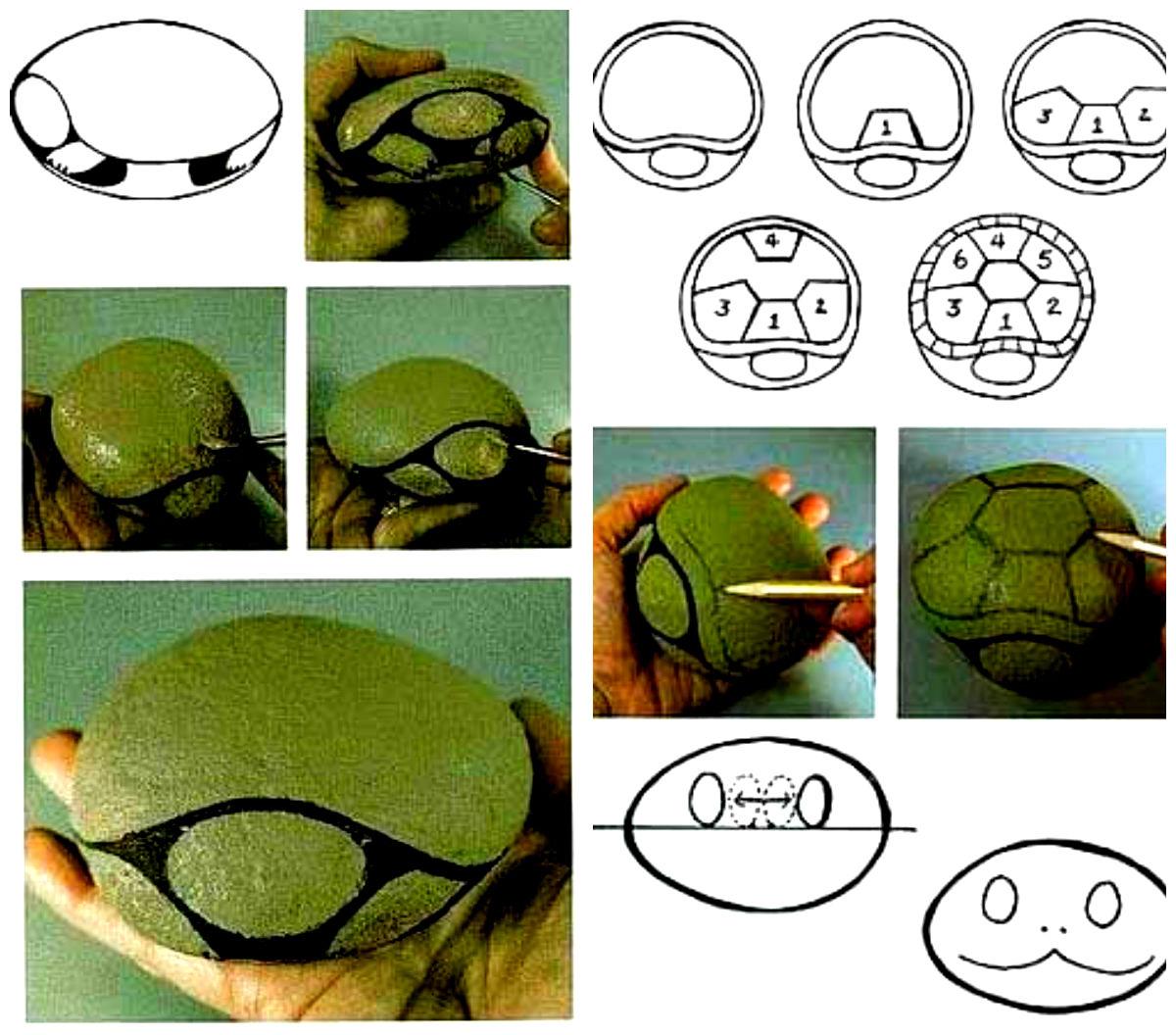 Как сделать черепаху своими руками для сада из цемента 67
