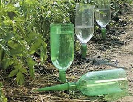 полив огорода из бутылки